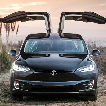 Tesla lovers